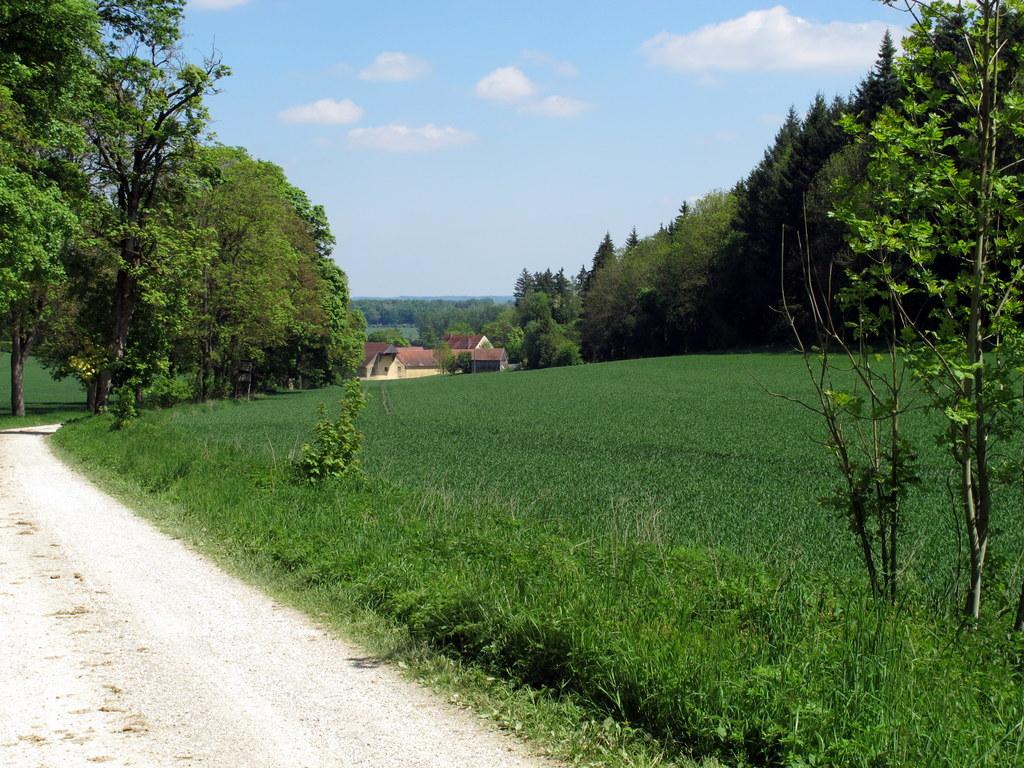 Wellenburg
