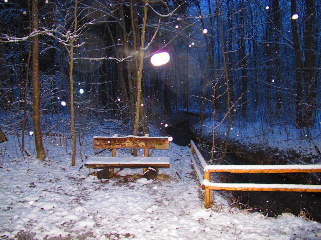 Der Siebentischwald - auch im Winter ein Vergnügen