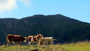 Blick zurück auf den bestiegenen Gipfel - in den Nockbergen, Kärnten