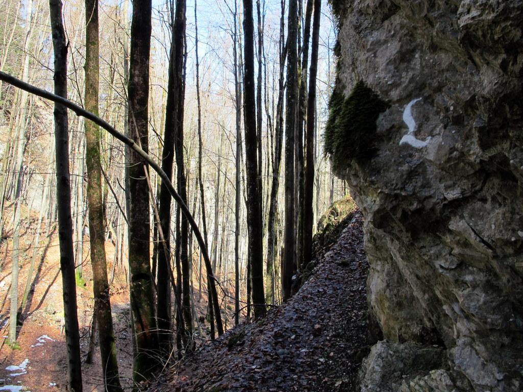 Lechweg Füssen-Pflach