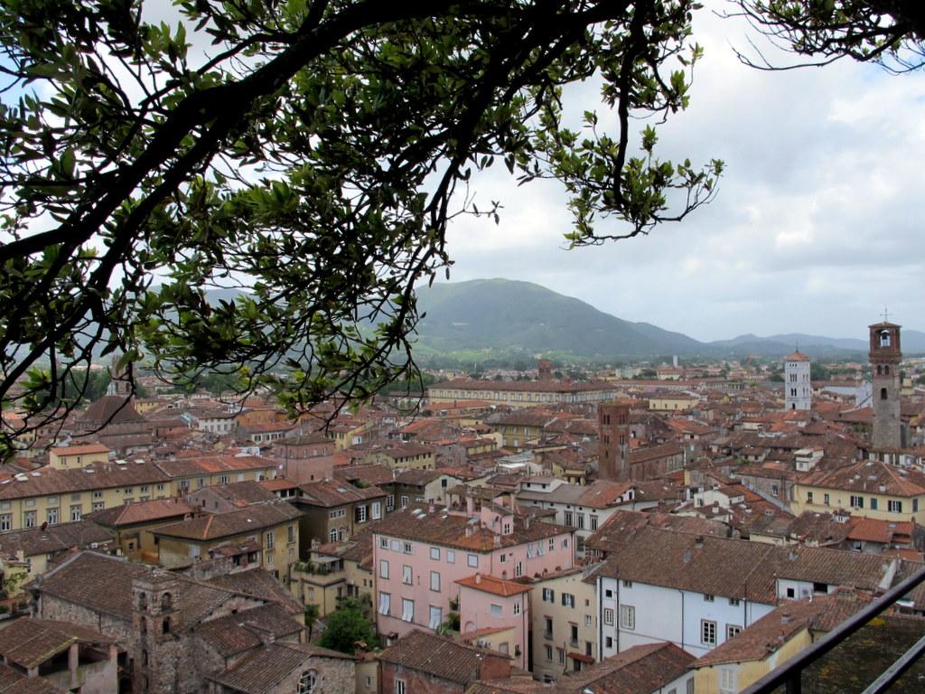 Blick auf Lucca