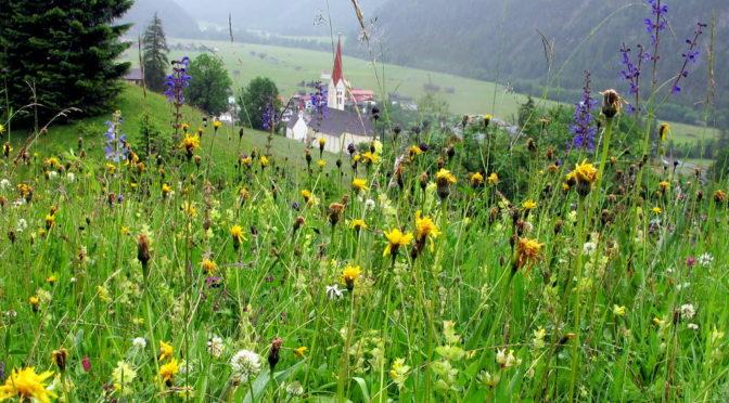 Lechweg – von Elmen bis Holzgau