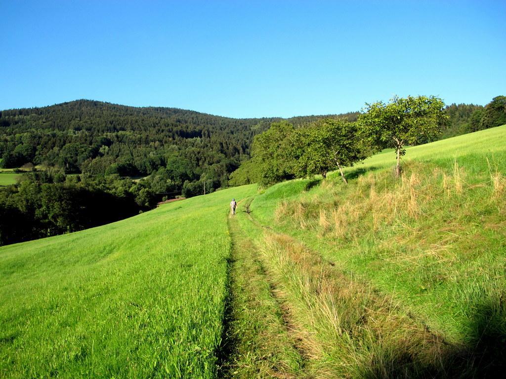 Chorwoche Bayer. Wald 2.-8.8 (267)