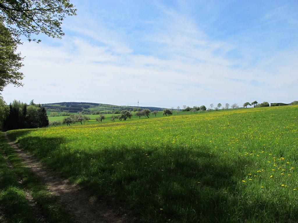 Unterwegs auf dem Saar-Hunsrück-Steig