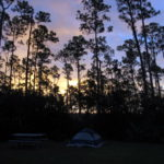 Lone Pine Campground Everglades NP