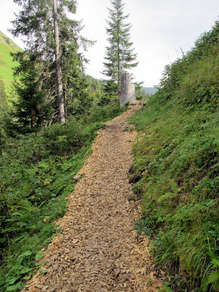 Lechweg Holzgau - Lech 3-.4.9 (65)