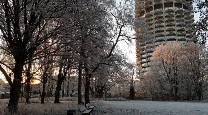 Walk to work – ein etwas anderer Jahresrückblick