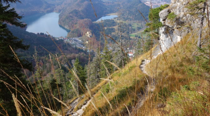 Maximiliansweg – von Hohenschwangau auf den Tegelberg