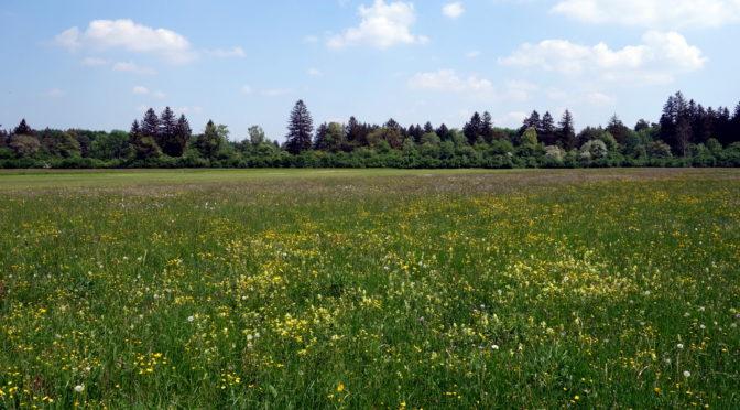 Kleine Fluchten – Königsbrunner Heide