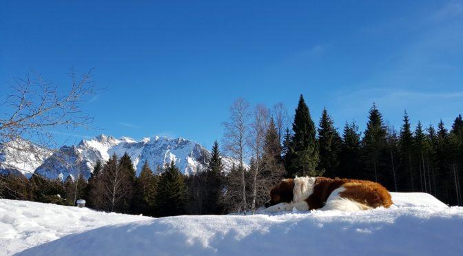 Ausgangspunkt Klais – zwei einfache Winterwanderungen
